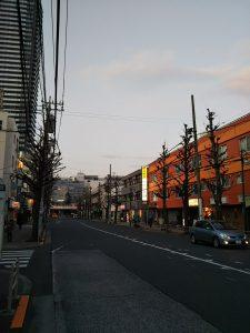 平成31年1月15日 夜のとちの木通りです