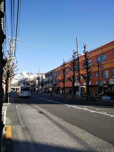 平成31年1月19日 朝のとちの木通りです