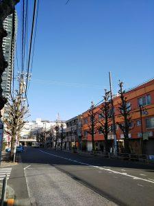 平成31年1月20日 朝のとちの木通りです