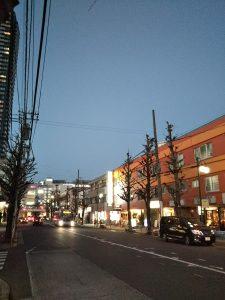 平成31年1月20日 夜のとちの木通りです