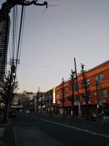 平成31年1月21日 夜のとちの木通りです