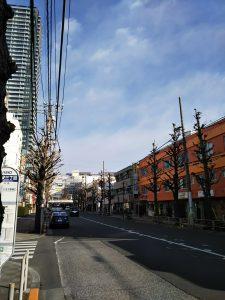平成31年1月22日 朝のとちの木通りです