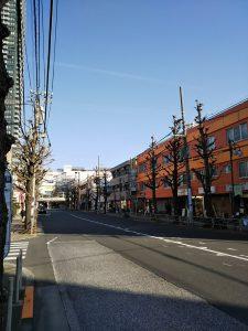 平成31年1月25日 朝のとちの木通りです