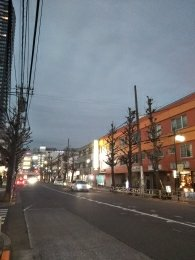平成31年2月5日 夜のとちの木通りです