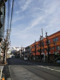 平成31年2月7日 朝のとちの木通りです