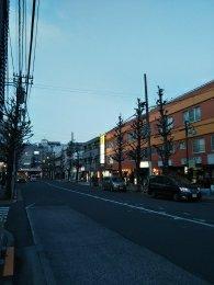 平成31年2月7日 夜のとちの木通りです