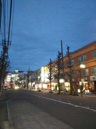 平成31年2月8日 夜のとちの木通りです