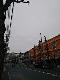 平成31年2月9日 朝のとちの木通りです