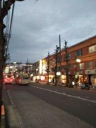 平成31年2月10日 夜のとちの木通りです