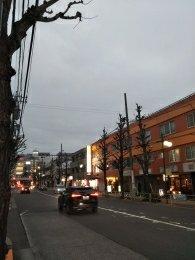 平成31年2月11日 夜のとちの木通りです