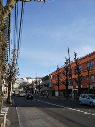 平成31年2月14日 朝のとちの木通りです