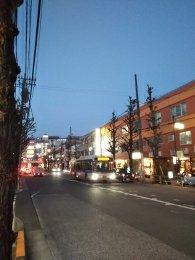 平成31年2月14日 夜のとちの木通りです