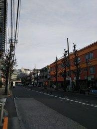 平成31年2月15日 朝のとちの木通りです
