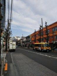 平成31年2月16日 朝のとちの木通りです