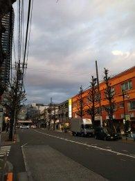 平成31年2月16日 夜のとちの木通りです