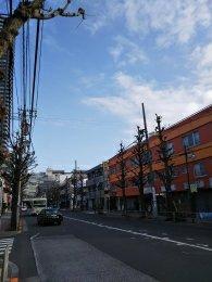 平成31年2月17日 朝のとちの木通りです