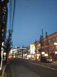 平成31年2月17日 夜のとちの木通りです