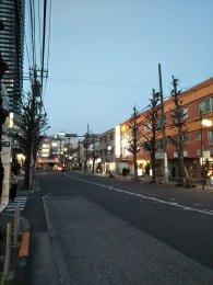 平成31年2月18日 夜のとちの木通りです