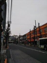 平成31年2月19日 朝のとちの木通りです