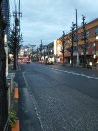 平成31年2月19日 夜のとちの木通りです