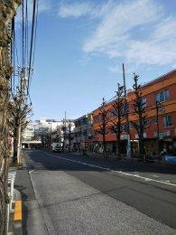 平成31年2月21日 朝のとちの木通りです