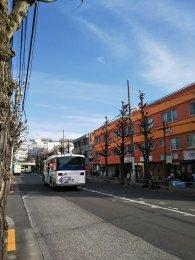 平成31年2月22日 朝のとちの木通りです