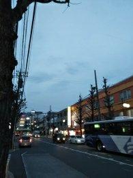 平成31年2月22日 夜のとちの木通りです