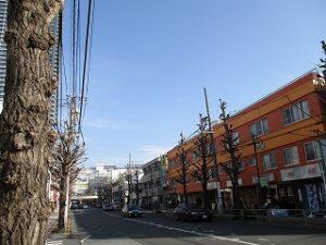 平成31年2月23日 朝のとちの木通りです