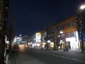 平成31年2月23日 夜のとちの木通りです