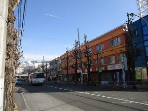 平成31年2月24日 朝のとちの木通りです