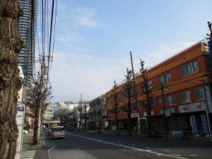 平成31年2月26日 朝のとちの木通りです