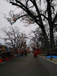 富士森公園の屋台通り