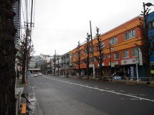 平成31年3月1日 朝のとちの木通りです