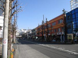 平成31年3月2日 朝のとちの木通りです