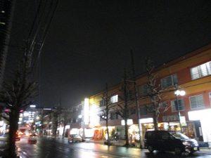 平成31年3月3日 夜のとちの木通りです