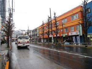 平成31年3月4日 朝のとちの木通りです