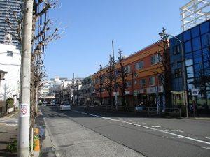 平成31年3月5日 朝のとちの木通りです