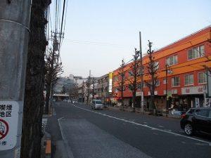 平成31年3月5日 夜のとちの木通りです