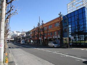 平成31年3月9日 朝のとちの木通りです
