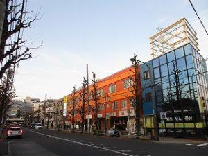 平成31年3月9日 夜のとちの木通りです