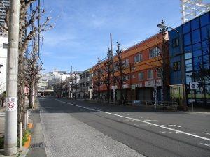 平成31年3月10日 朝のとちの木通りです