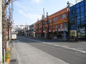平成31年3月16日 朝のとちの木通りです