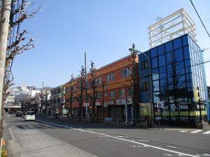 平成31年3月17日 朝のとちの木通りです