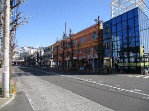 平成31年3月18日 朝のとちの木通りです