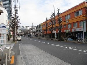 平成31年3月19日 朝のとちの木通りです