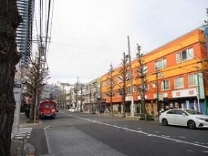 平成31年3月19日 夕方のとちの木通りです