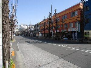 平成31年3月22日 朝のとちの木通りです