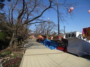 富士森公園東側から中央への通り