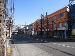 平成31年3月24日 朝のとちの木通りです
