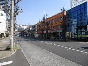 平成31年3月25日 朝のとちの木通りです